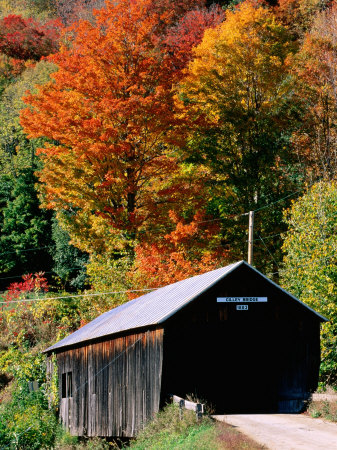 Autumn Leaves Surrounding Cilley Covered Bridge, Vermont